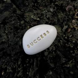 Magic Pebble - SUCCESS gold