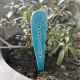 PARADICSOM - Kerámia fűszer jelölő