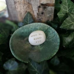 Varázskavics - HIDD EL, MENNI FOG arany